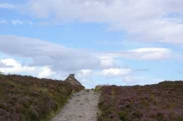 The Ryvoan Bothy coming into view.