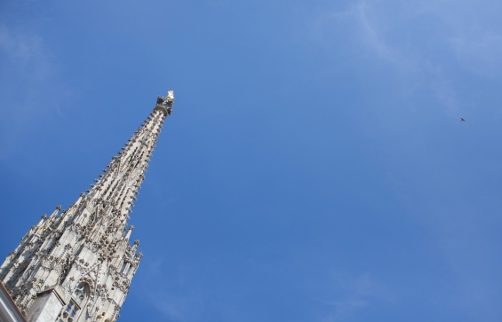 This is the tower of the Stephansdom and the falcon who lives there.
